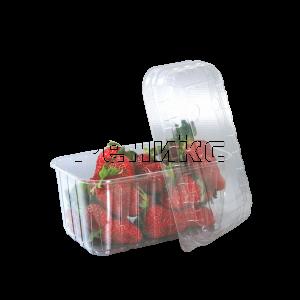 кутия плод 500
